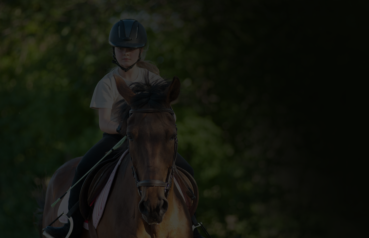 Riding School or Livery Yard Website Template