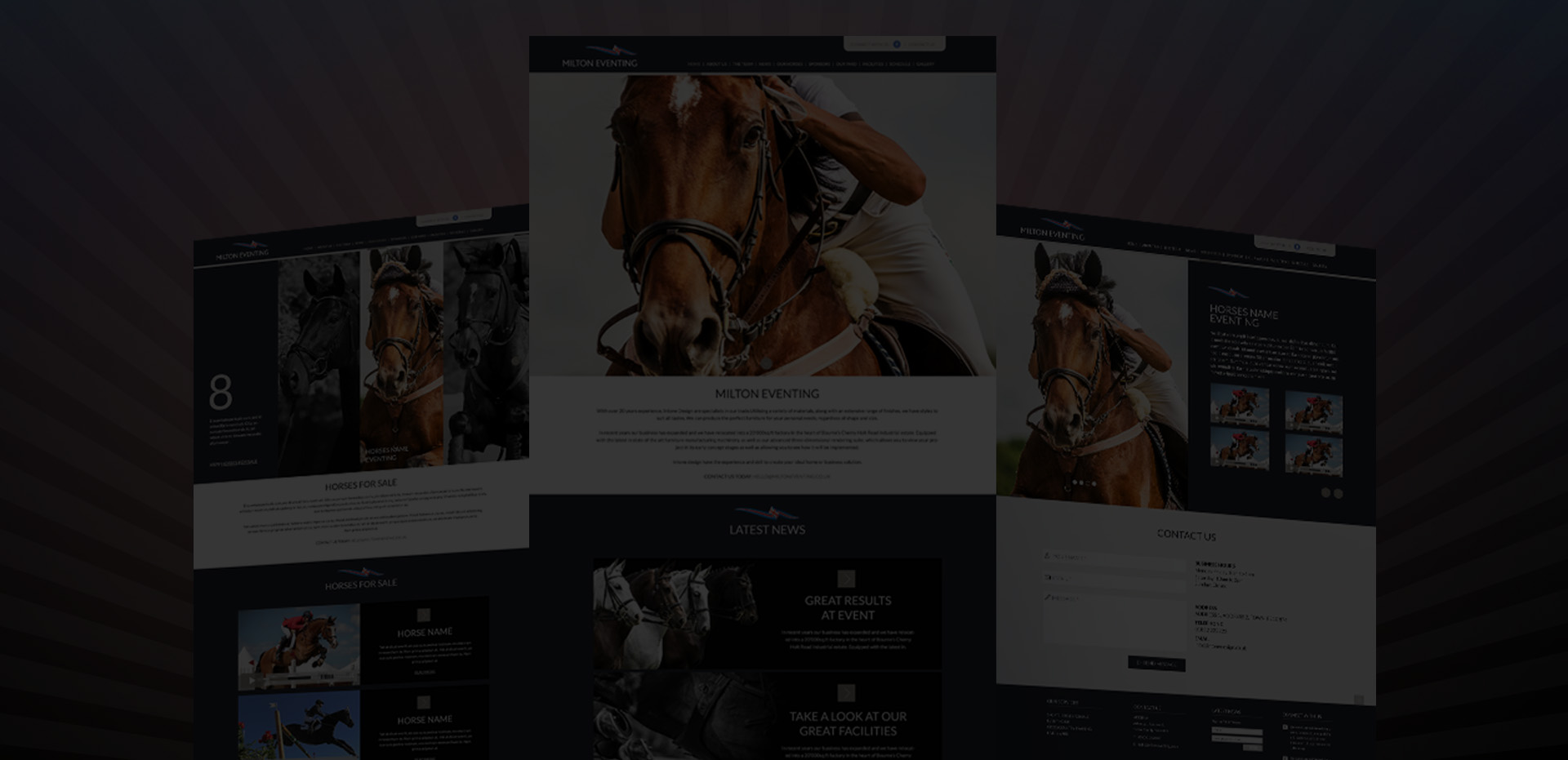 Exciting new template website launch for those selling horses online!!